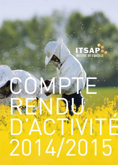 itsap rapport activité